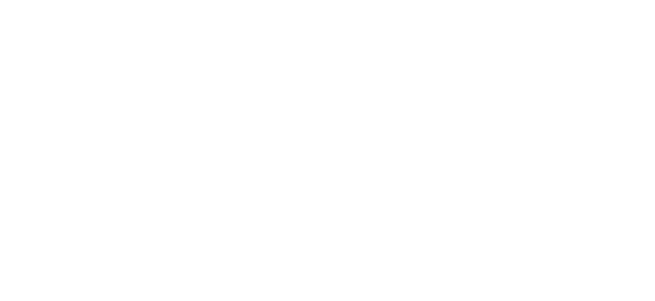 FIREFLY Technology is an award-winning, patent pending pre-surgical and intraoperative navigation technology that is focused on spinal application.